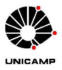Unicamp – Estágio T.I.
